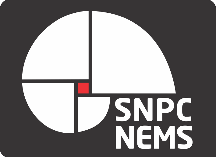 SNCP NEMS